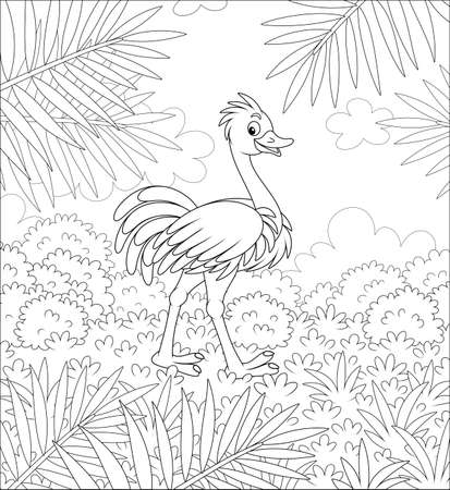 Funny ostrich walking on grass in savanna against the background of bushes and palm branches on a warm summer day, black and white vector cartoon illustration