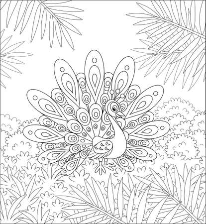 Exotic peacock with a large ornate tail walking on grass against the tropical background of bushes and palm branches on a summer day, black and white vector cartoon illustration