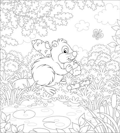 Furry beaver with a big flat tail and large teeth carrying a small gnawed log by a small lake in a forest on a beautiful summer day, black and white vector cartoon illustration