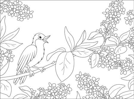 Small singing nightingale perched on a branch with flowers of a spring blooming tree, black and white vector cartoon illustration for a coloring book page