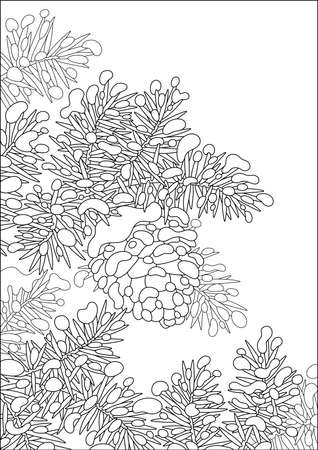 Cone hanging on a snow-covered prickly fir-tree branch on a cold winter day, black and white vector cartoon illustration on a white background