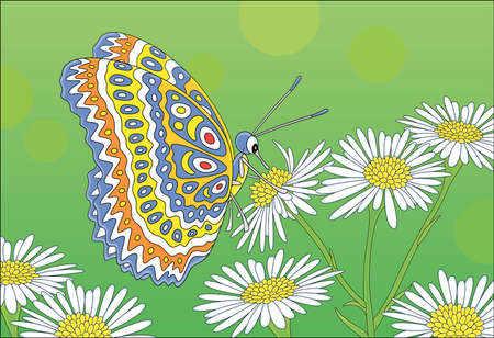 Ornate bright butterfly drinking nectar on a white and yellow wildflower on a green summer field, vector cartoon illustration Illusztráció
