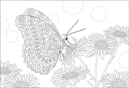 Ornate butterfly drinking nectar on a beautiful wildflower on a summer field, black and white vector cartoon illustration for a coloring book page