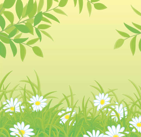 Natural spring background with green tree branches over beautiful white flowers among thick green grass on a forest glade, vector cartoon illustration