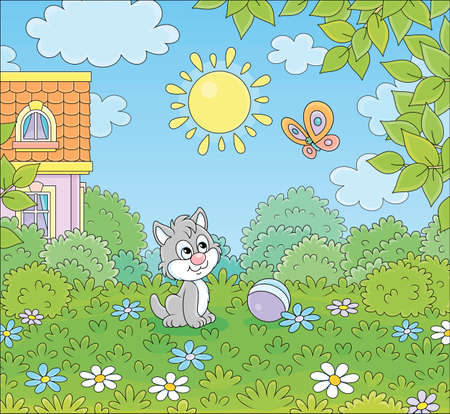 Little grey kitten playing with a flittering bright butterfly on a green lawn by a colorful village house on a sunny summer day, vector cartoon illustration