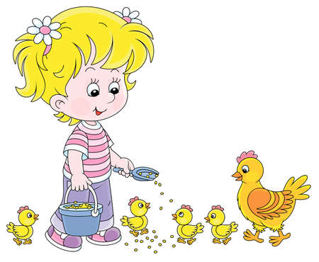 Little girl farmer standing with a bucket of feed grain and feeding a merry brood of small yellow chicks and a cute hen on a chicken farm, vector cartoon illustration on a white background
