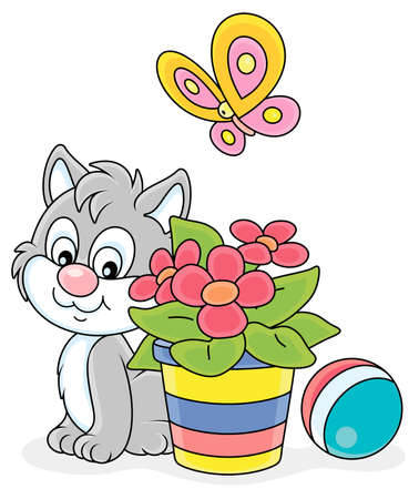 Little grey kitten sitting near a beautiful window flower in a striped flowerpot and watching a flittering bright butterfly, vector cartoon illustration on a white background