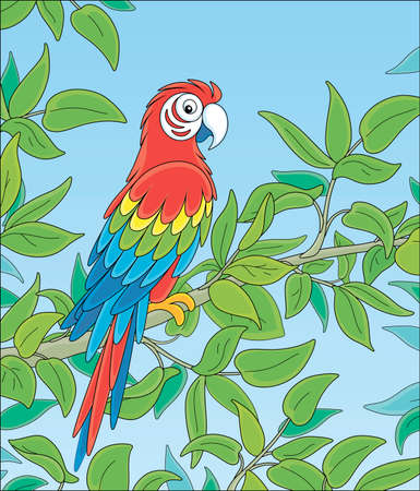 Amusing colorful parrot macaw, long-tailed and with brightly colored plumage, perched on a green tree branch in a tropical jungle, wild scenery, vector cartoon illustration