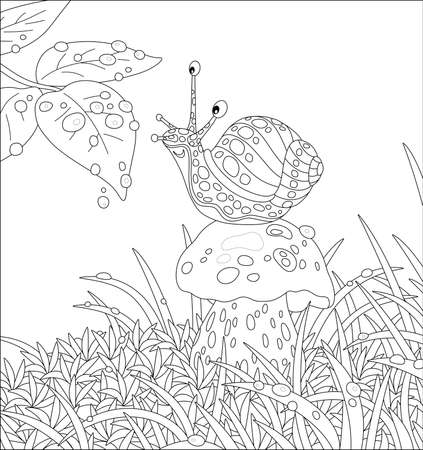 Funny garden snail with a beautiful spotted shell, sitting on a big mushroom among grass on a forest glade, friendly smiling and playing with rain drops, vector cartoon illustration Illustration