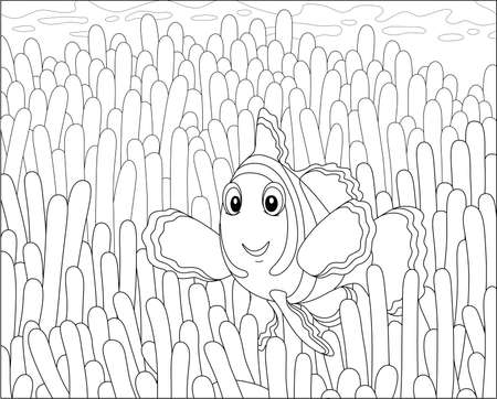 Funny striped anemonefish swimming among poisonous stings of an anemone on a coral reef in a tropical sea, black and white outline vector cartoon illustration for a coloring book page