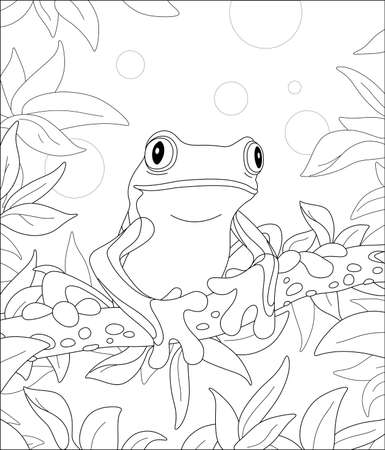 Funny poisonous frog sitting on a tree branch in a wild tropical jungle, black and white outline vector cartoon illustration for a coloring book page