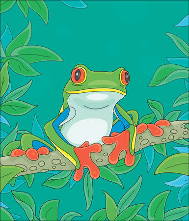Funny colorful and poisonous frog sitting on a green tree branch in a wild tropical jungle, vector cartoon illustration 일러스트