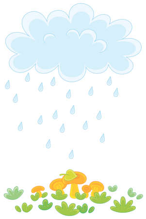 Funny plump rain cloud with dripping raindrops pouring mushrooms on a green forest glade on a rainy summer day, vector cartoon illustration on a white background