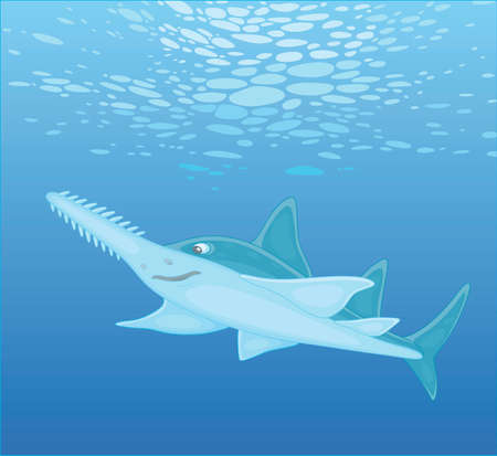 Large sinister marine largetooth sawfish swimming in blue water of a tropical sea, vector cartoon illustration Vector Illustration
