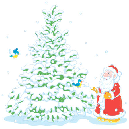 Santa Claus choosing a beautiful Christmas tree in a snowy winter forest, vector cartoon illustration on a white background