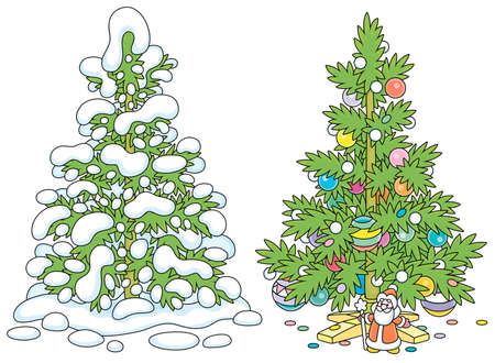 Snowy green fir in a winter forest and a decorated Christmas tree with colorful balls, garlands and a small toy Santa Claus under prickly branches, vector cartoon illustrations