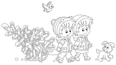Happy little kids carrying a snowy fir tree on a small sled to decorate it to Christmas, black and white outline vector cartoon illustration for a coloring book page Illusztráció