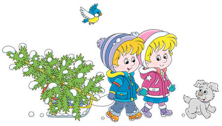 Happy little kids carrying a snowy fir tree on a small sled to decorate it to Christmas, vector cartoon illustration isolated on a white background