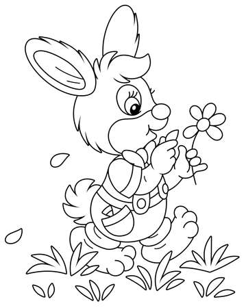 Little enamored bunny walking on grass and guessing on a daisy, black and white outline vector cartoon illustration for a coloring book page