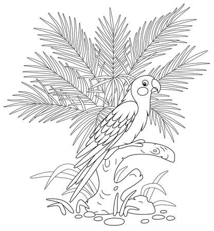 Amusing exotic parrot with a long tail perched on a tree branch among palm leaves in a tropical jungle, black and white outline vector cartoon illustration for a coloring book page Vectores
