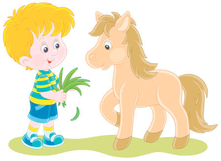 Happy little boy feeding a cute small pony with fresh grass, vector cartoon illustration isolated on a white background