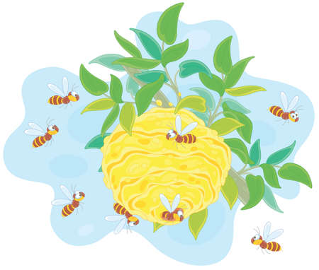 Angry swarm of striped wasps flying and buzzing around their hive on a branch in a summer forest, vector cartoon illustration isolated on a white background