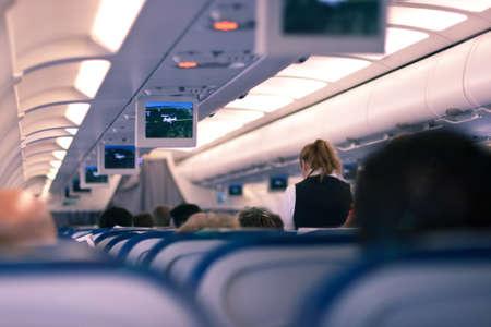 flight attendant: In the plane