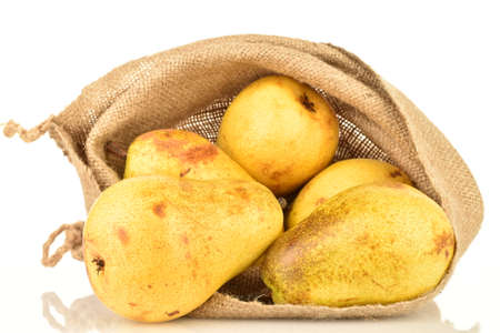 Ripe juicy pears, close-up, in a jute bag, on a white background.