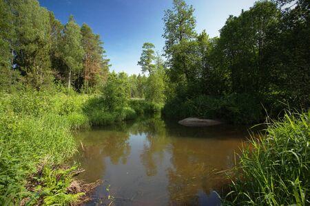 Paysage d'été en Russie