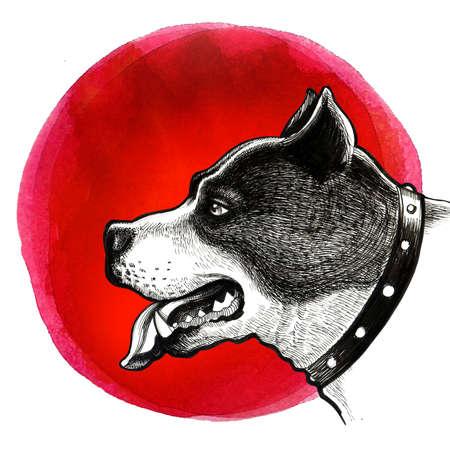 Pit bull head sketch