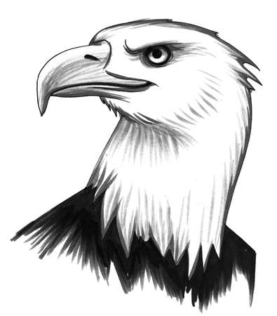 Eagle hoofd