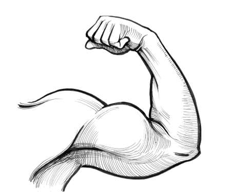 Silne bicepsy