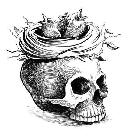 Schedel en nest. Inkt hand getrokken illustratie op een witte achtergrond Stockfoto