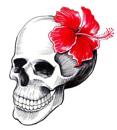 赤いハイビスカスの花を持つ頭蓋骨。白い背景のインクイラストレーション