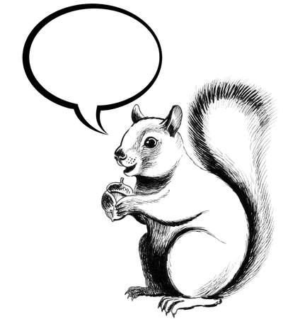 다람쥐와 연설 풍선입니다. 흰색 배경에 잉크 흑백 그림