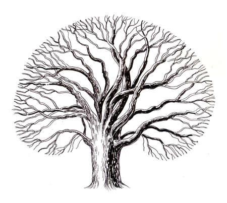 Oude boom Inkt illustratie