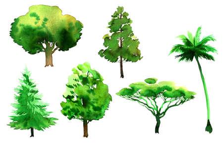 水彩画の木。インクイラスト
