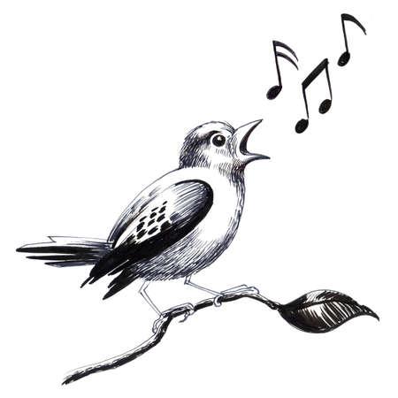 Bird on a tree. Ink illustration