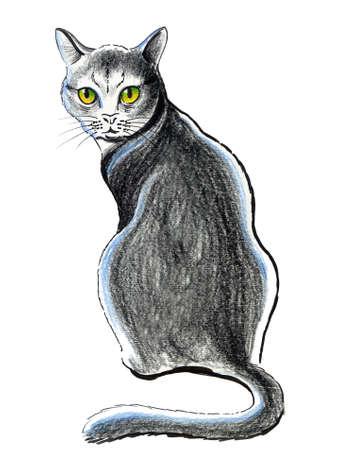 Sitting cat. Ink illustration