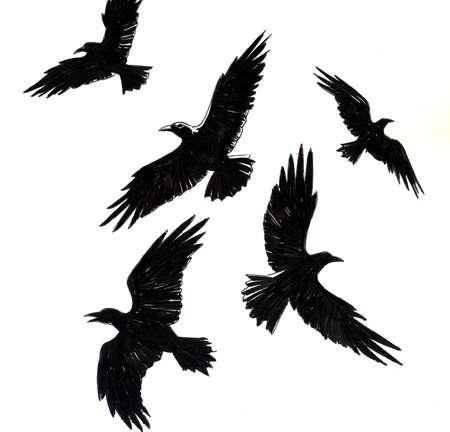 Pájaros cuervos Ilustración de tinta Foto de archivo - 90414998