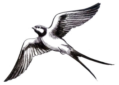 Volar golondrina pájaro Foto de archivo - 90411973
