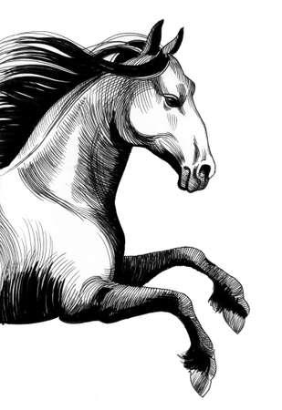 Inkt paard