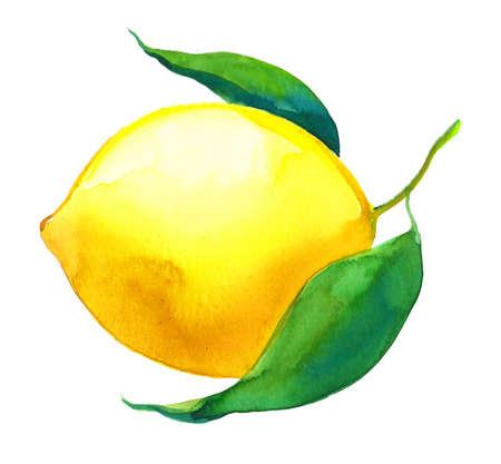 ジューシーなレモン