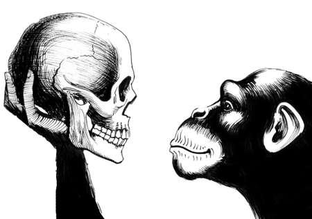 Chimpansee die een menselijke schedel houdt