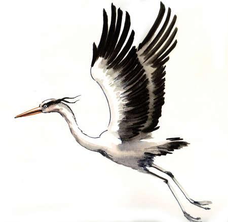 Flying crane. Watercolor sketch