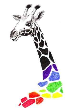 Rainbow giraffe