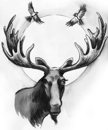 Moose and flying birds hand drawing