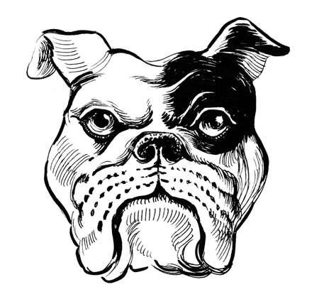 Bulldog head Фото со стока - 102769165