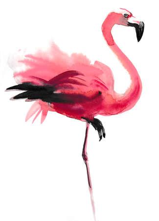 Watercolor flamingo. 스톡 콘텐츠
