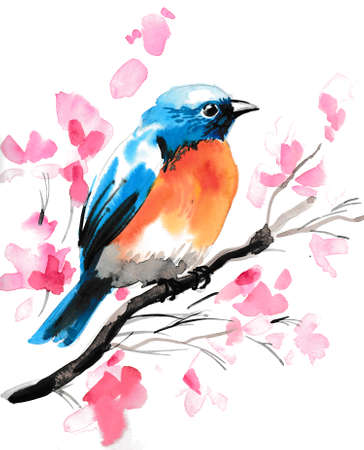 Colorful bird sitting on a blossoming cherry tree. Watercolor sketch Reklamní fotografie